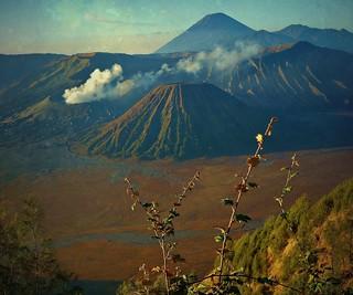 INDONESIEN,Java , Sandmeer/Caldera am Bromo Vulkan, 17427/9985