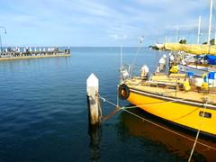 Yellow hull at Hastings (Diepflingerbahn) Tags: hastings marina victoria yellow yachts fishermen jetty moorings panasoniclumixdmctz80 westernportbay