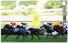 IMG_0596 (2) (smartlamhk) Tags: 沙田馬場 馬場 跑馬 賽馬 賽事 馬匹 馬會 騎師 騎馬 騎士 賽馬會 投注 race horse 禮儀小姐 canon 佳能 panning