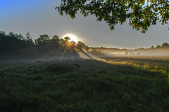 Sonnenaufgang in der Heide (K-PIXEL-N) Tags: gifhorn viehmoor teich see wasser moor sonne sonnenaufgang gras baum himmel landschaft boot fluss foto ngc