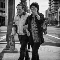 XSCF7369-Edit.jpg (Terry Cioni) Tags: x100f tc dailywalk burnaby