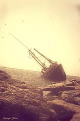 Shipwreck (moniquef123) Tags: ship boat wreck ocean capecod landscape water monochrome sea coast coastline