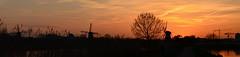 Panorama van Kinderdijkse molens | Golden hour (Frank Berbers) Tags: panorama panoramabild panoramicphotography photographiepanoramique panoramafotografie kinderdijk zuidholland alblasserwaard kinderdijksemolens poldermolens unesco werelderfgoedlijst windmillsatkinderdijk moulinàvent moulin windmolen windmühlen windmill nikond5100 nederland sunset zonsondergang sonnenuntergang coucherdusoleil landschap landschaft landscape paysage blauweuurtje blauestunde bluehour heurebleue goldenhour goudenuurtje heuredorée goldenestunde
