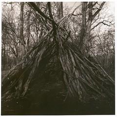 The Hut (Mark Dries) Tags: markguitarphoto markdries hasselblad500cm distagon 50mmf40 ilfordfp4 rodinal r09 darkroomprint agfa brovira warmtone sepia foma brown hut
