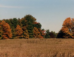 Maybury_Fall_1999_2 (Count_Strad) Tags: mayburystatepark maybury state park mi michigan northville autumn winter