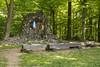Kopiec Czartoryskiego (konradpoland) Tags: góry świętokrzyskie łysa góra polska poland nature outdoor nikon d5200 sigma rock rocks 1750 1750mm forest tree trees green