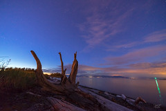 Pipers Lagoon (cdnfish) Tags: nanaimobc nanaimo bc britishcolumbia canada vancouverisland piperslagoon water waterfront sony sonya7m2 a7m2 beach log logs blue bluehour clouds cloud stars landscape landscapephotography ocean oceanscape shoreline shore