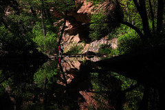 Nature's mirror (Pritha Photography) Tags: symmetry reflection minimalism contrast naturephotos nature naturallight arizona sedona southwest westfork fineartphotographs azphotograher trees water creek oakcreek wood forest tree rock