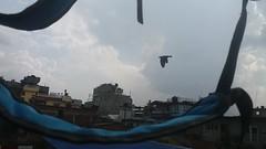 too lazy to fly (ashnakhanal) Tags: lazy tired fatigue bird frame framed framedbird sky bag buildings block photography