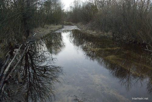 Волинське болото InterNetri Ukraine 13