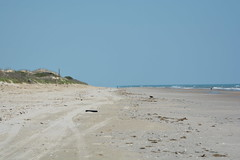 Quiet Virginia Beach (vbvacruiser) Tags: virginia virginiabeach beach atlanticocean falsecapestatepark backbaynationalwildliferefuge osprey nikon d7100