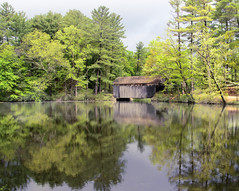(Chancy Rendezvous) Tags: chancyrendezvous davelawler blurgasm sturbridge oldsturbridge osvorg pond water reflection trees landscape bridge coveredbridge newengland massachusetts