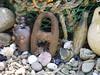 Peep o (green gennii) Tags: woodmouse garden jersey ci