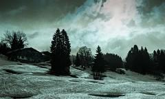Combloux lomography turquoise 02 2018027 (Patrick.Raymond (4M views)) Tags: alpes haute savoie megeve comloux montagne neige froid gel bois arbre foret argentique nikon lomography turquoise