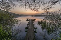 Bossee 1 (rahe.johannes) Tags: westensee schleswigholstein see holzsteg steg sonnenaufgang ufer meinsh bewuchs