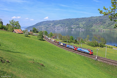 Vectron SBB Cargo international (francoispobez) Tags: vectron train zug immensee arth goldau schweiz suisse sbb cargo cff ffs international railroad marchandise güterzug gallarate br 193 see landscape paysage