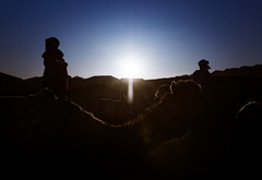 (Leandro Mise) Tags: morocco zagora desert backlit camels