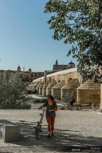 Paseo por la ribera del Guadalquivir