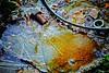 Le reflet du miroir (CELURBEX) Tags: vaucluse ancien abandonado abbandonato abandoned abandonné old vieux explorar esplorare explore wasteland friche oublié urbex exploration urban graffity graff tag water eau industrie production lumix carton papier macro