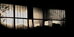 Mystic Window (ReppiX) Tags: mystic window canon 200d 1750mm lost place sepia old fenster urbex rotten