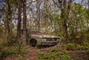 Always Looking Down (Wayne Stadler Photography) Tags: abandoned preserved junkyard georgia classic automotive derelict overgrown vehiclesrust rusty retro vintage oldcarcity rustographer rustography white