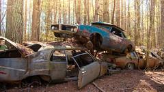 Anyway (Wayne Stadler Photography) Tags: abandoned preserved junkyard georgia classic automotive derelict overgrown vehiclesrust rusty retro vintage oldcarcity rustographer rustography white