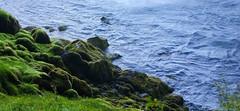 Edge of the Ocean (Kayla Warkentin) Tags: shore water ocean iceland