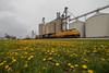 Yellowness (Jake Branson) Tags: train railroad locomotive up union pacific c449w dash 9 sd60i ns yellow flower grain elevator spring il illinois farina