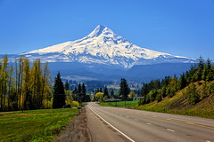 Road to Mt. Hood (louelke - on and off) Tags: mthood oregon stratovolcano mountain trees road orchards valley