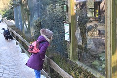 """Tierpark Bielefeld • <a style=""""font-size:0.8em;"""" href=""""http://www.flickr.com/photos/82496916@N07/41818647241/"""" target=""""_blank"""">View on Flickr</a>"""