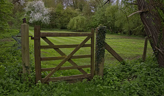 The private garden...