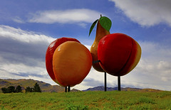 The Cromwell Big Fruits : Summer morning . . . (Clement Tang **busy**) Tags: travel nationalgeographic newzealand summermorning southisland artinstallation artwork sculpture landscape handheldhdr greengrass bluesky whiteclouds concordians scenicsnotjustlandscapes apricot apple nectarine pear thebigfruits cromwell