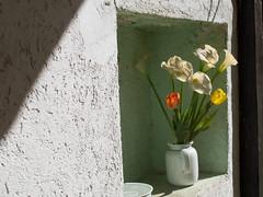 Stillleben (S-Antibes) Tags: naturemorte stillleben stilllife
