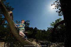 Werner Soester Duinen (Manuel Speksnijder) Tags: duinen duin dunes dune soesterduinen soesterdunes provincieutrecht thenetherlands soest canoneos5dmarkiii canon ef1635mmf28liiusm werner jongen boy portret portrait boom tree sun zon bluesky blauwelucht flashlight flitslicht