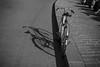 Les quais ensoleillés. (theodirector) Tags: paris parislife pariscity iloveparis parislover streetphoto streetphotography streetphotographer streetreport daylight lesberges seine laseine seineriver bergesdeseine docks parisdocks seinedocks blackandwhite noiretblanc monochrome biker bike bicycle velo bicyclette road alone lonely rideabike pavement
