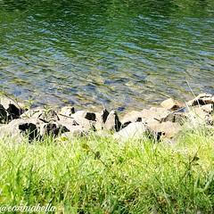 Juhuuu meine lieben 😊 Da ich für das Element Wasser sehr bekannt bin und wenn ich Wasser besonders schön finde, muss ich es fotografieren. Hoffe es gefällt euch genauso gut, wie mir. Wünsche euch mit diesem Bild, ein wundervollen Nachmittag und spät (cosimabella) Tags: handsome recklinghausen nature like liveonboard germany cosimabella water picture lifestyle stone outdoor picoftheday beautiful amazing awesome kanal elementaria cosima me empathin sailing boatlife ts