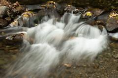 20180508_9715_7D2-40 Mini Rapids (johnstewartnz) Tags: creek river slowshutterspeed 24105mm 24105 canonef24105mmf4lisusm hanmer canon canonapsc apsc eos 7d2 7dmarkii 7d canoneos7dmkii canoneos7dmarkii 100canon