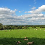 UnFirleing the Beauty of the East Sussex Countryside thumbnail