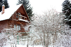 Old rustic wooden house in the snowy forest in winter (yannamelissa) Tags: winter wood log house wooden rural nature old season landscape tree architecture home building cold forest snow sunny countryside roof rustic frost snowy beautiful white traditional round north russia canadian shack travel vintage spring frame day sun ancient construction country window tranquil scenery ice exterior tradition