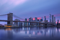 Touch of Pink (fesign) Tags: newyorkcity bridgebuiltstructure newyorkstate night brooklynbridge brooklynnewyork dusk illuminated nopeople oneworldtradecenter skyline architecture blue businessfinanceandindustry city citylife cityscape colourimage development downtown famousplace growth horizontal idyllic internationallandmark manhattannewyorkcity manhattanfinancialdistrict officeblockexterior outdoors photography reflection rivereast sky suspensionbridge tourism tranquility travel traveldestinations usa urbansprawl pink sunset