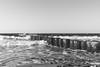 _DSC4735 (Joschka_van_der_Lucht) Tags: balticsee meer ostsee see sommer strand beach sand summer sun wood warnemünde rostock mecklenburgvorpommern deutschland de