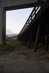 Rokkor35mm28_A7_AbandonedFreeway (71) (bad.moon) Tags: freeway minolta oakland rokkorx35mmf28 sonya7 traintracks urbanabandoned urbandecay