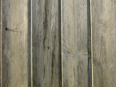 tongue and groove (vertblu) Tags: boards boardedup wood wooden woodenboards tongueandgroove painted paintedwood oldpaint white whitepainted verticals lines linien shadow shadowgap sidelight sidelit woodgrain grained knothole knot monochrome texture textur surface screw vertblu