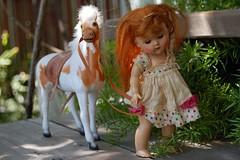 Ginny's Palomino (Emily1957) Tags: vintage vintageginny vogue hardplasticdoll toyhorse light naturallight nikond40 nikon kitlens toys toy dolls doll
