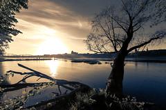 Torun, Polska (Pawelus) Tags: torun polska poland panorama river vistula wisla lapinski travel