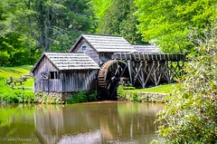 Mabry Mill, Virginia (emarlie) Tags: canonrebelt6 amateurphotography naturephotography photography mill nature outdoors mountains blueridgeparkway virginia mabrymill