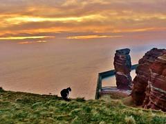 Island*Sunset&Cat (My heart stopped a moment) (BrigitteE1) Tags: inselhelgoland islandheligoland sunset katze cat sonnenuntergang nordsee northsea insel island heligoland helgoland langeanna