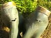 152 -- Hevea Wellies from 1978 ripped and wornout -- Rubberboots -- Gummistiefel undicht -- Regenlaarzen (HeveaFan) Tags: rubberboots rubberlaazen 在泥里的靴子橡胶 kaplaarzen ゴム長靴 gummistiefel 威灵顿长靴 stiefel stivali stövlar ブーツ dunlop hevea aigle ripped wornout rainboots regenlaarzen wellies bottes wellworn caoutchouc galoshes wreckled trashed regenstiefel waterlaarzen soles tuinlaarzen loch leaky damaged trouée undicht versleten laarzen wellington kaput mud boue fertig riss gomma trou abgelatscht kaputt lek gumboots boots bottas vredesteinlaarzen vredesteinwellies vredesteinstiefel