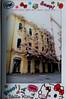 Istantanee_aprile 2018 3 (Alfonsi studio) Tags: pescara città ciclamini rosa fioritura italia abruzzo istantanee fuji mini 90 instax