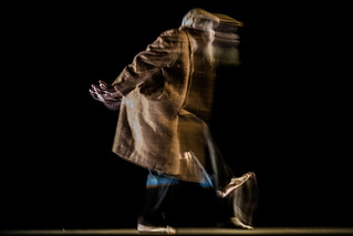 Poetic Movement -Mushimaru Fujieda- (Patzcuaro, México. Gustavo Thomas © 2017)
